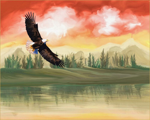 Eagle art, licensed for non-commercial reuse